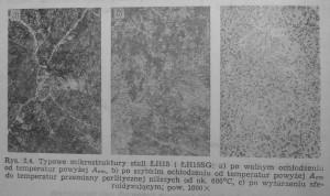 mikrostruktura lh15